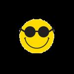Logotipo da Fundação Dorinha Nowill