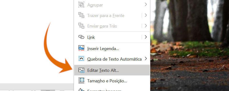 Captura de tela, menu de contexto, editar texto alternativo